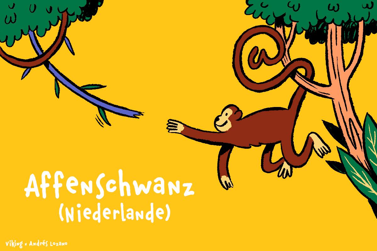 Niederlande - Affenschwanz